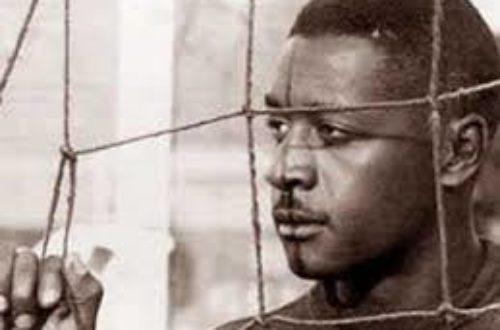 Article : La malédiction du gardien noir au Brésil