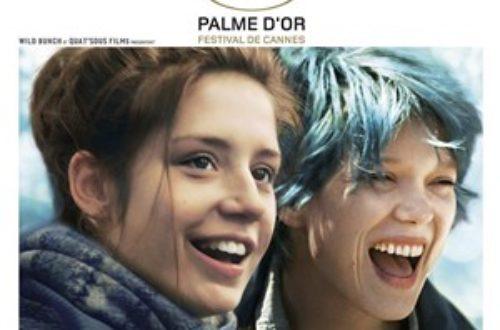 """Article : """" La vie d'Adèle """" est arrivée au Brésil"""