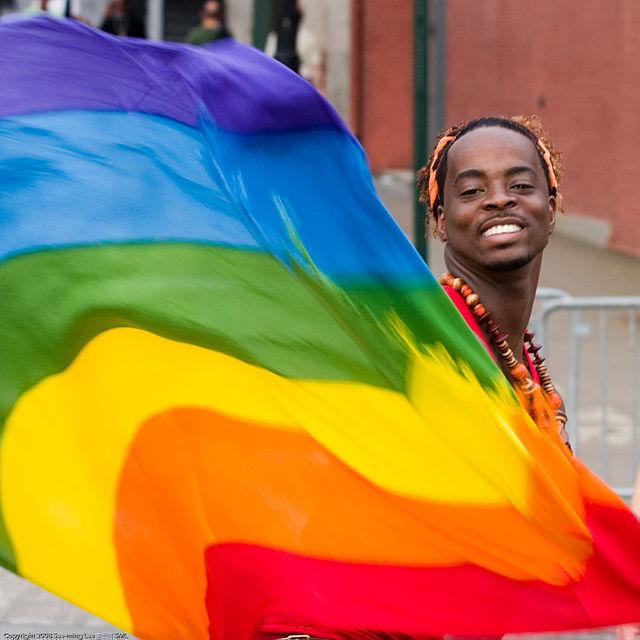 https://pt.wikipedia.org/wiki/Orgulho_gay#mediaviewer/Ficheiro:Rainbow_Flag_Gay_Pride_New_York_2008.jpg