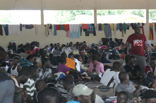Article : La crise humanitaire des Haïtiens de São Paulo